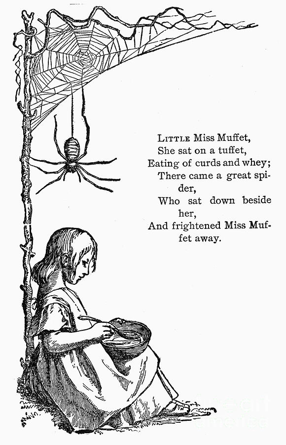 19th Century Photograph - Little Miss Muffet by Granger
