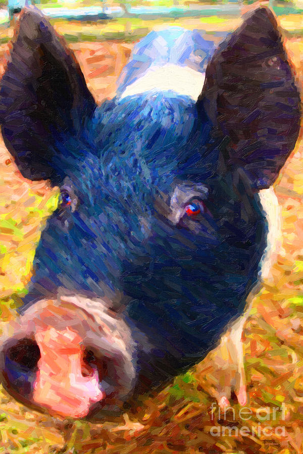 Little Miss Piggy Photograph  - Little Miss Piggy Fine Art Print