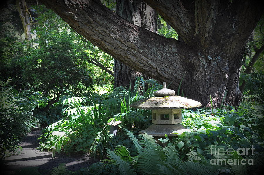 Garden Photograph - Little Pagoda Under The Big Tree by Tanya  Searcy