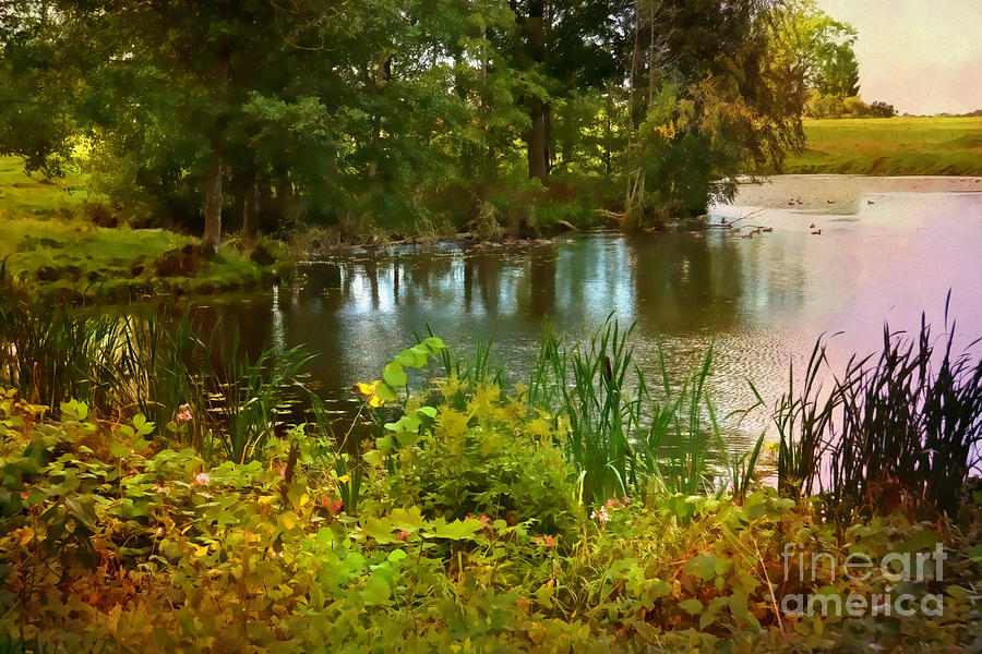 Little Pond Colored Photograph