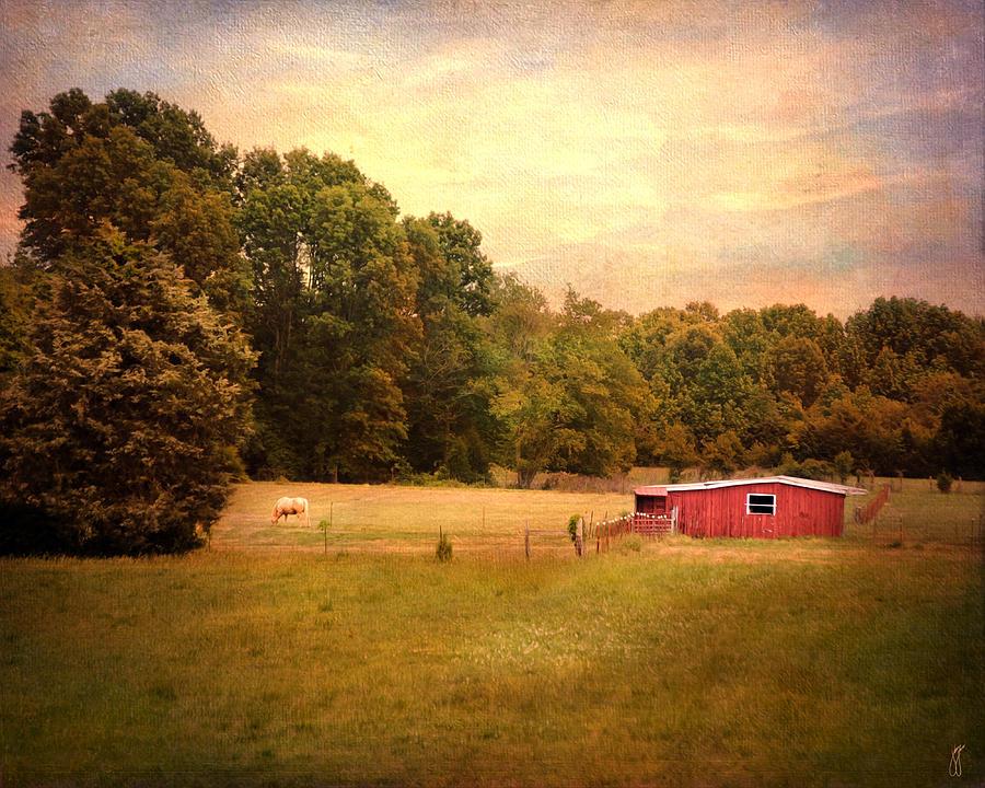 Jackson Tn Photograph - Little Red Barn by Jai Johnson
