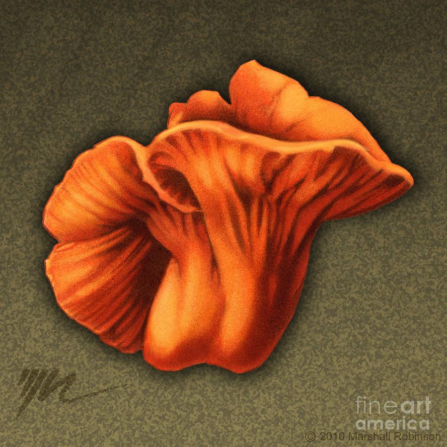 Lobster Mushroom Painting