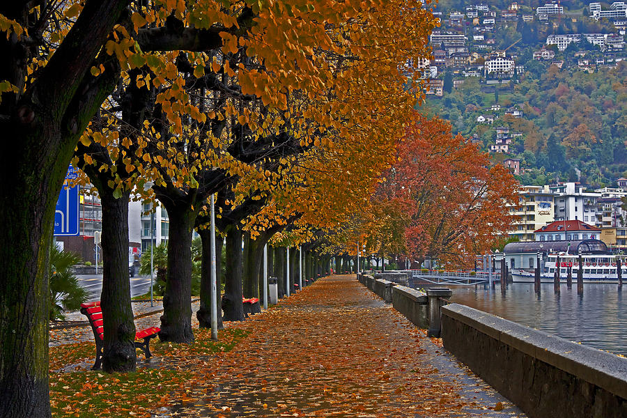 Locarno In Autumn Photograph  - Locarno In Autumn Fine Art Print