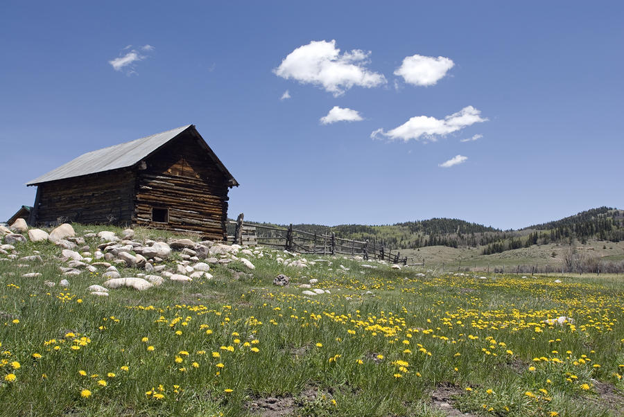 Log Cabin On The High Country Ranch Photograph