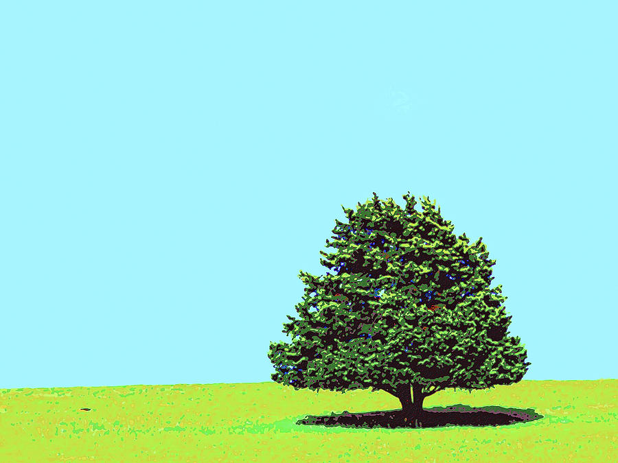 Lone Tree Mixed Media  - Lone Tree Fine Art Print