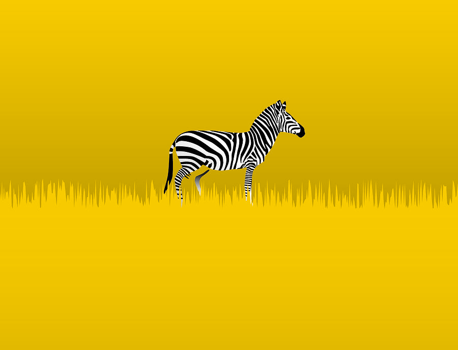 Lone Zebra Digital Art