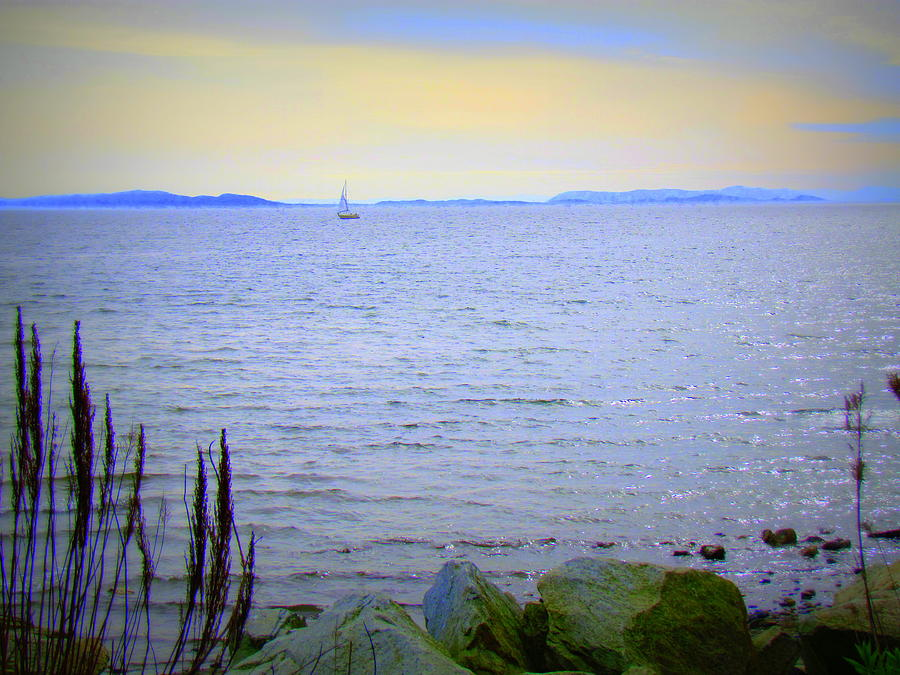 Lonely Sailboat II Photograph  - Lonely Sailboat II Fine Art Print