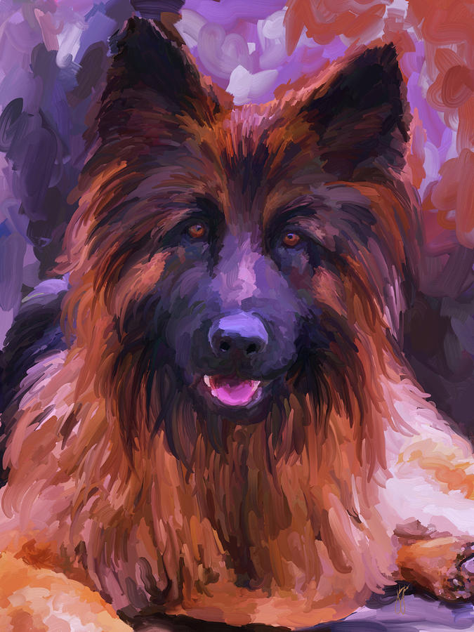 Long Haired German Shepherd Painting  - Long Haired German Shepherd Fine Art Print