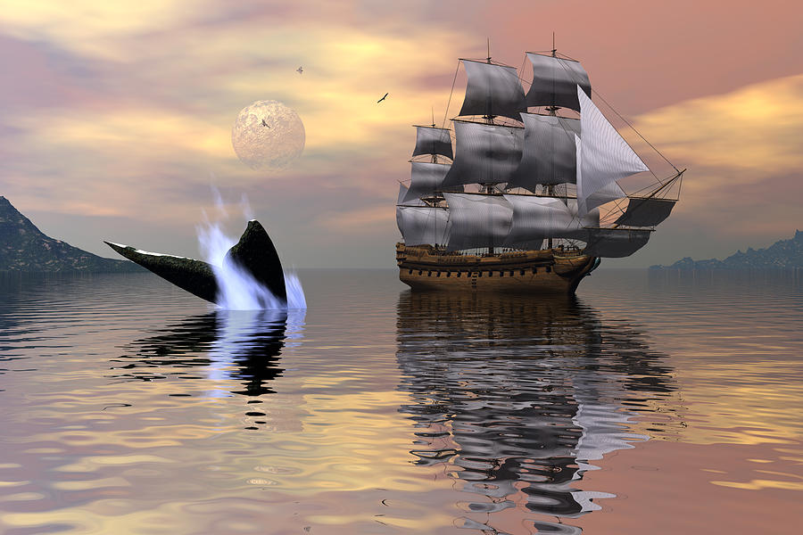 Looking For Moby Dick Digital Art  - Looking For Moby Dick Fine Art Print