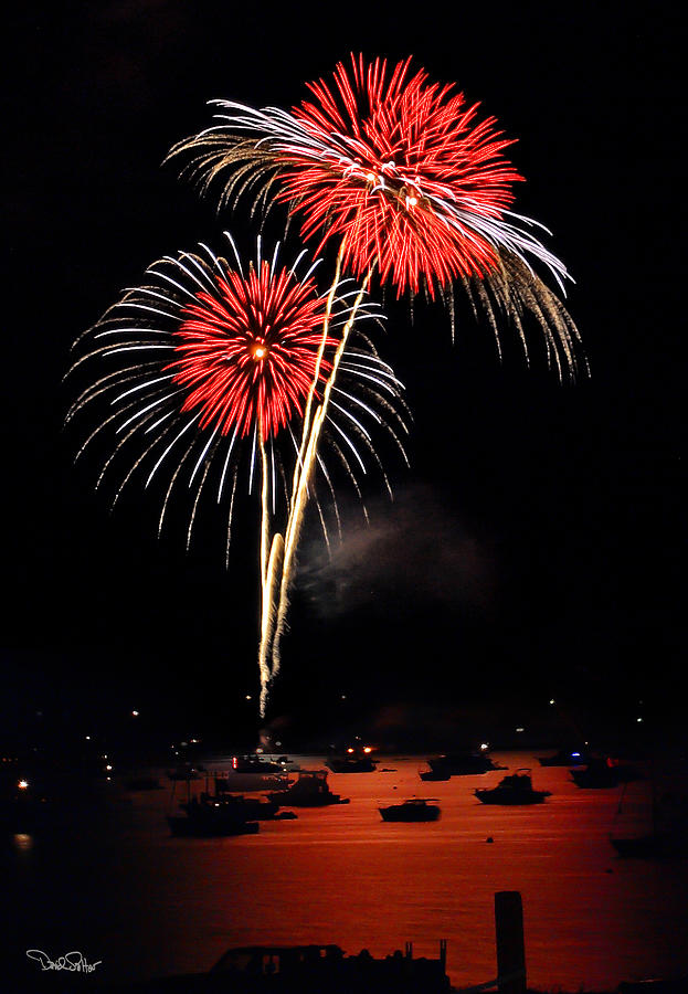 Fireworks Photograph - Lopez Island Fireworks 3 by David Salter