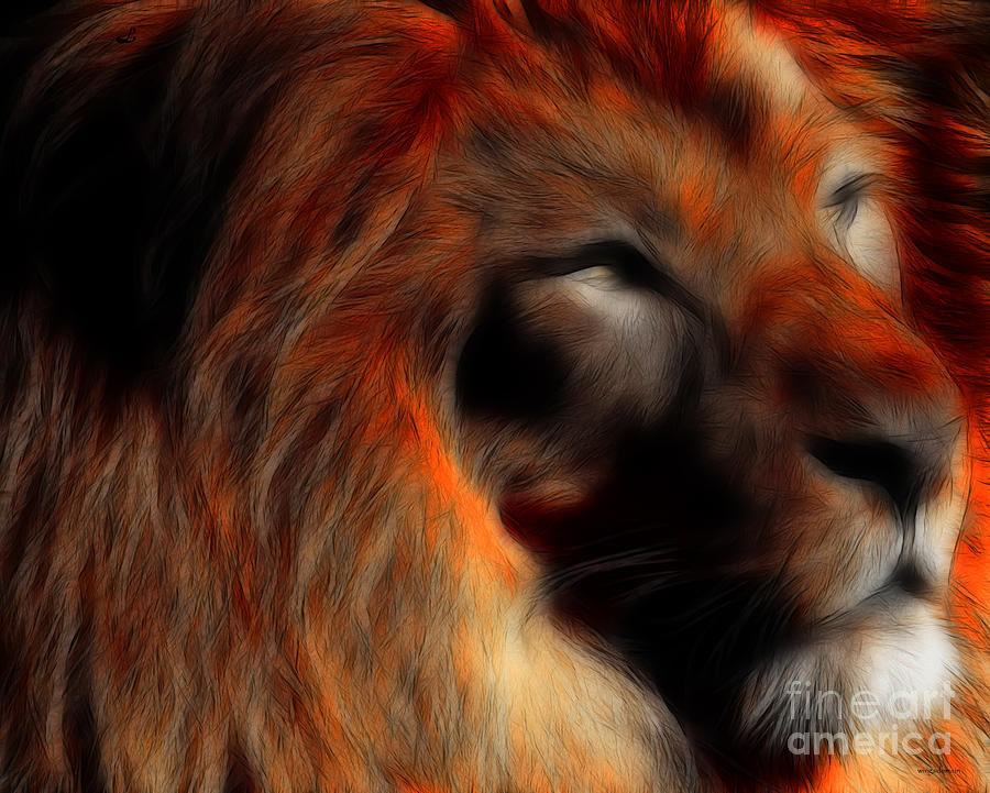 Lord Of The Jungle Photograph  - Lord Of The Jungle Fine Art Print
