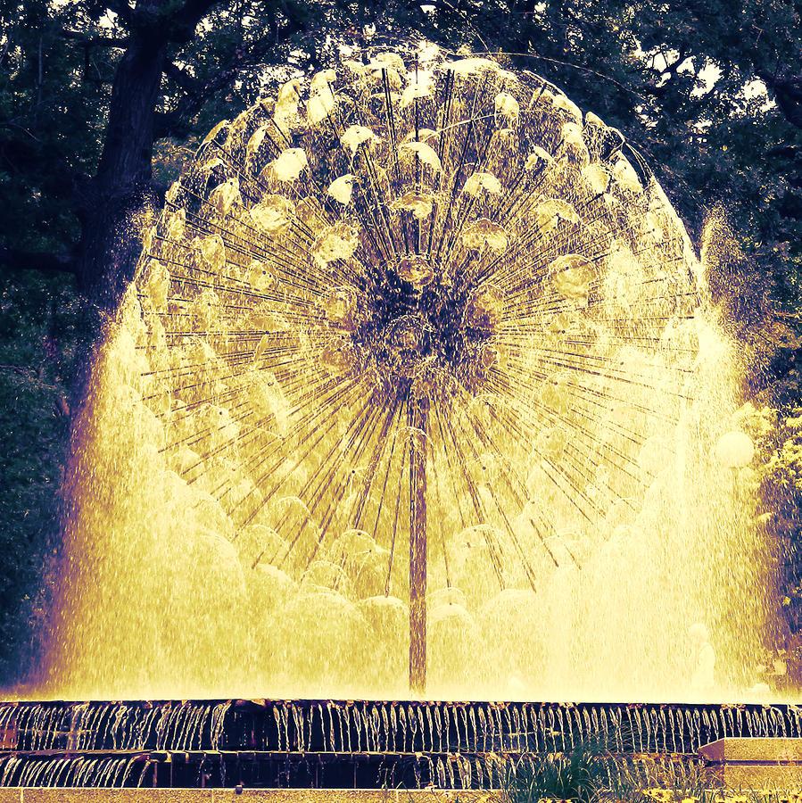 Loring Fountain Photograph