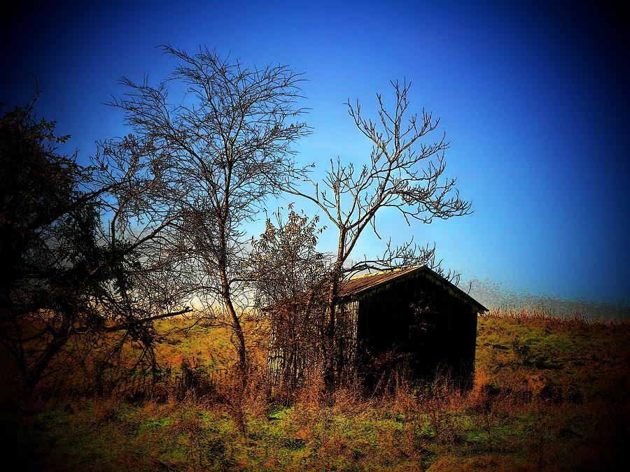 Lost Shed Photograph  - Lost Shed Fine Art Print