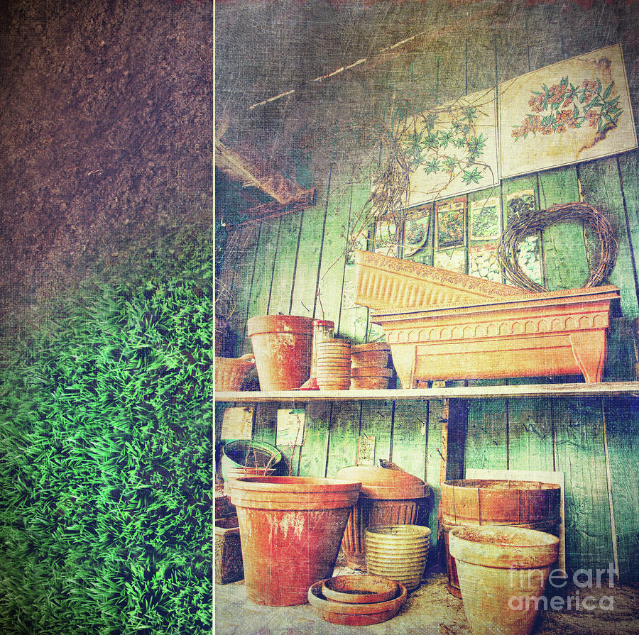 Lots Of Different Size Pots In The Shed Photograph  - Lots Of Different Size Pots In The Shed Fine Art Print