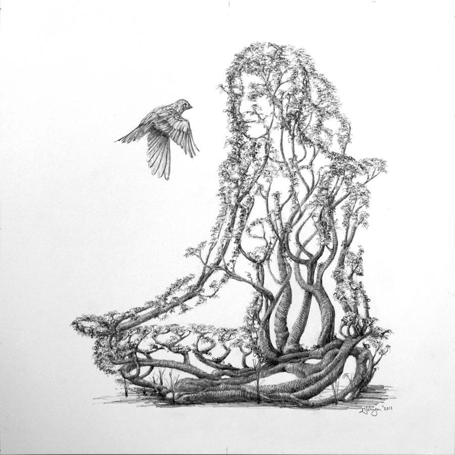 Lotus Dancer Drawing