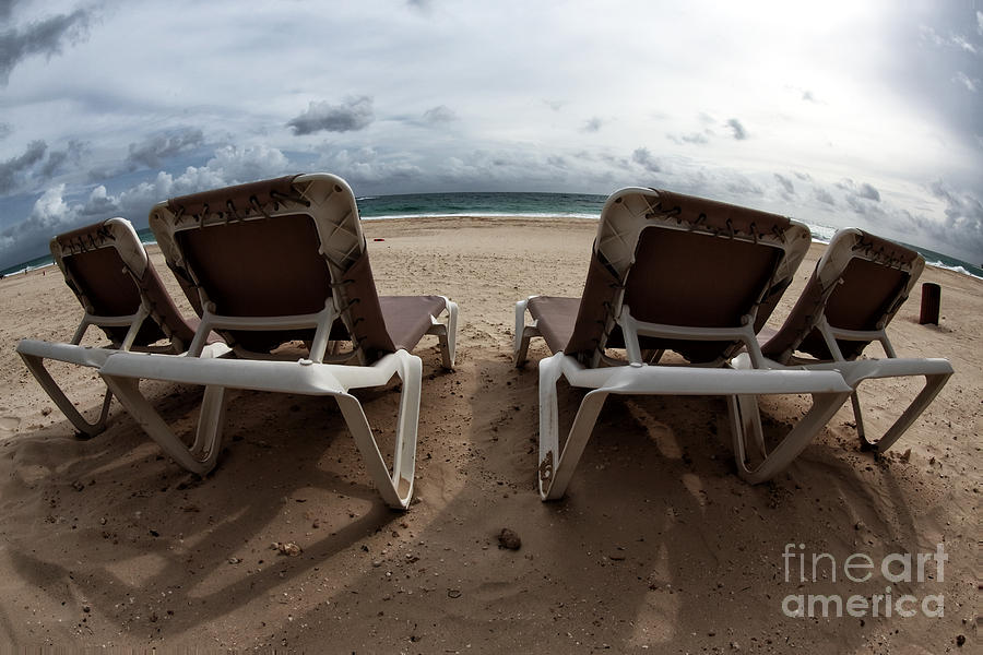 Lounging Photograph  - Lounging Fine Art Print