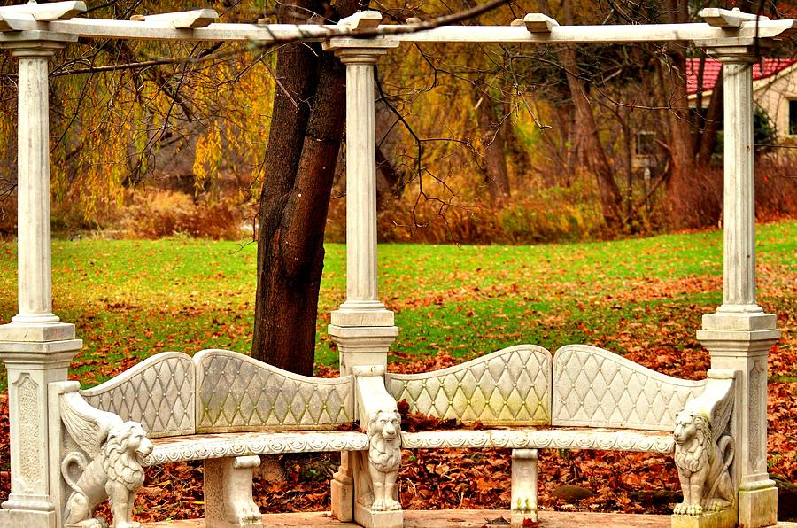 Love Bench Photograph  - Love Bench Fine Art Print