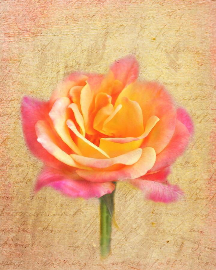 Floral Photograph - Love Letter by Jai Johnson