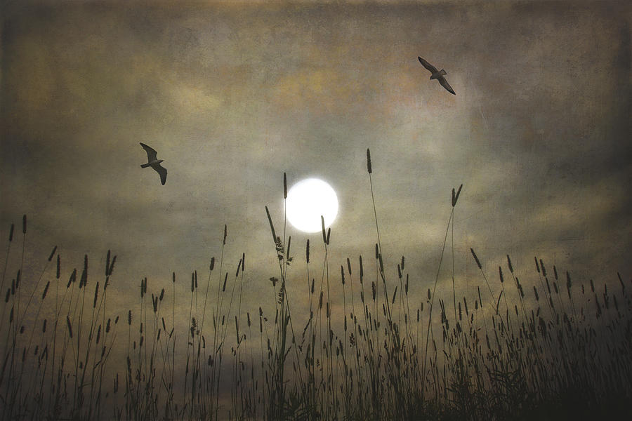 Lovers Moon Photograph  - Lovers Moon Fine Art Print