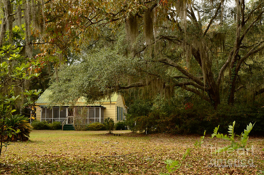 Low Country Cottage Photograph  - Low Country Cottage Fine Art Print
