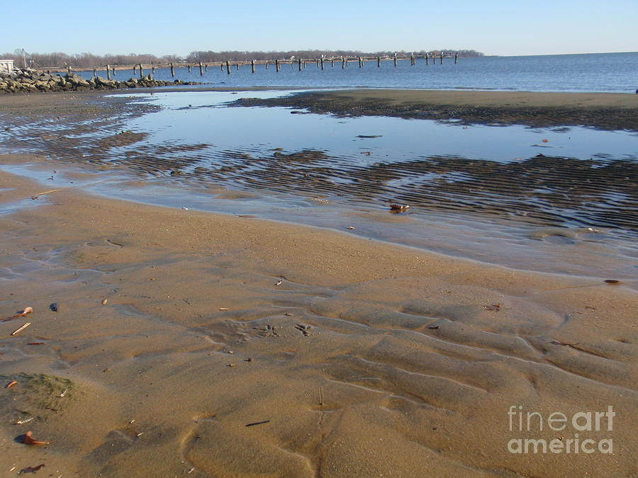 Low Tide Chesapeake Bay Photograph  - Low Tide Chesapeake Bay Fine Art Print