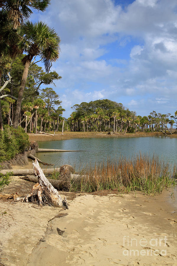 Lowcountry Lagoon Photograph