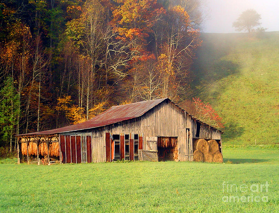 Lowes Barn Photograph  - Lowes Barn Fine Art Print