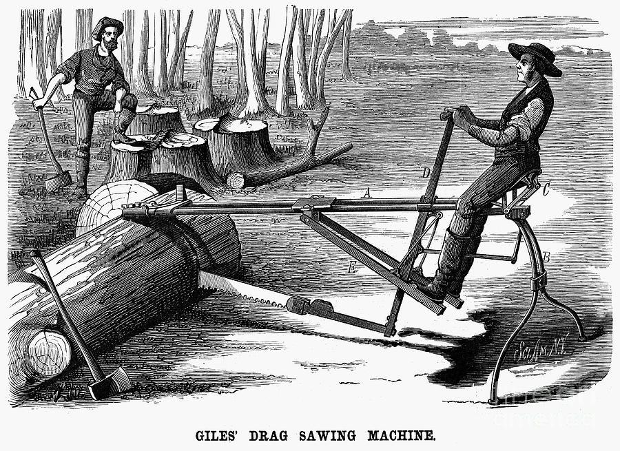 1879 Photograph