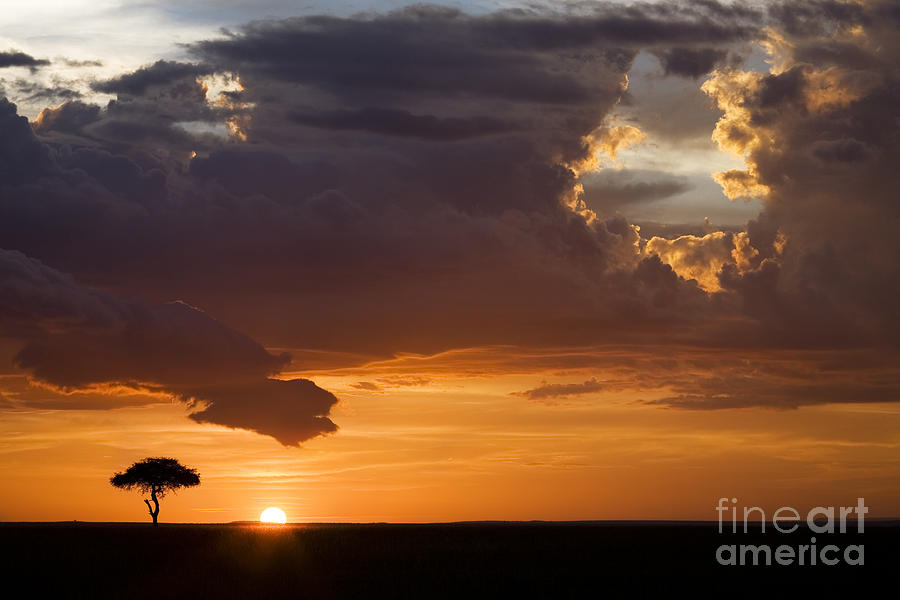 Maasai Mara Sunset Photograph  - Maasai Mara Sunset Fine Art Print