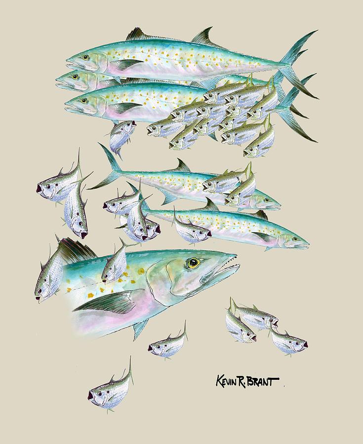 Mackerel Montage Painting