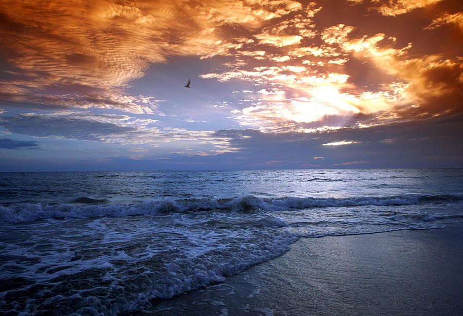 Sunrise Photograph - Madeira Fire Sky by David Yunker