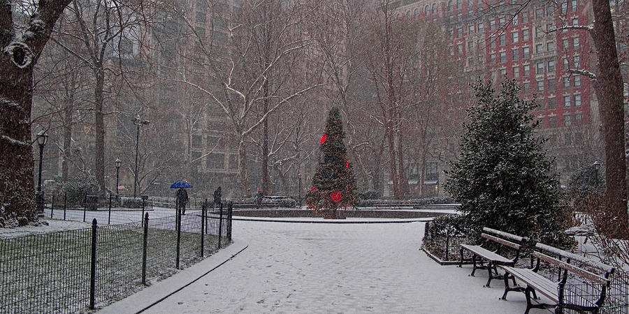 Madison Square Park In The Snow At Christmas Photograph