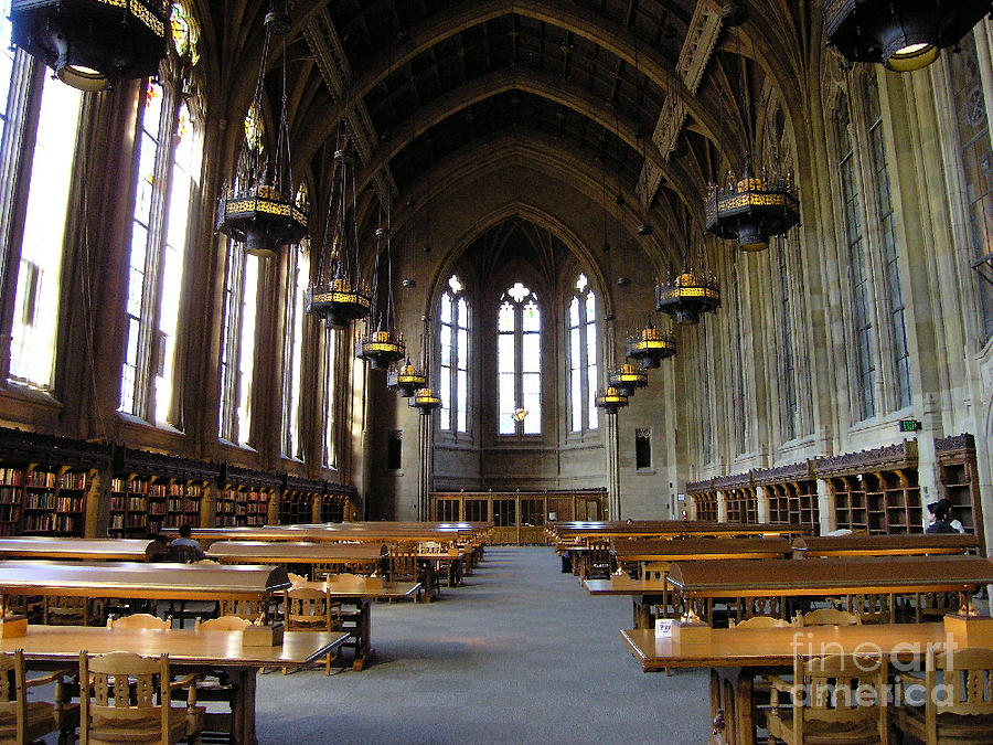Magic Library Photograph  - Magic Library Fine Art Print