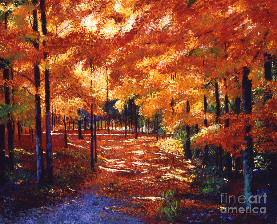 Magical Forest Painting  - Magical Forest Fine Art Print
