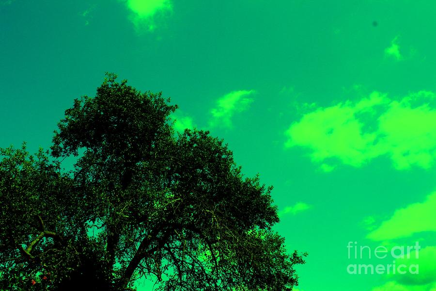 Magical Sky Photograph  - Magical Sky Fine Art Print