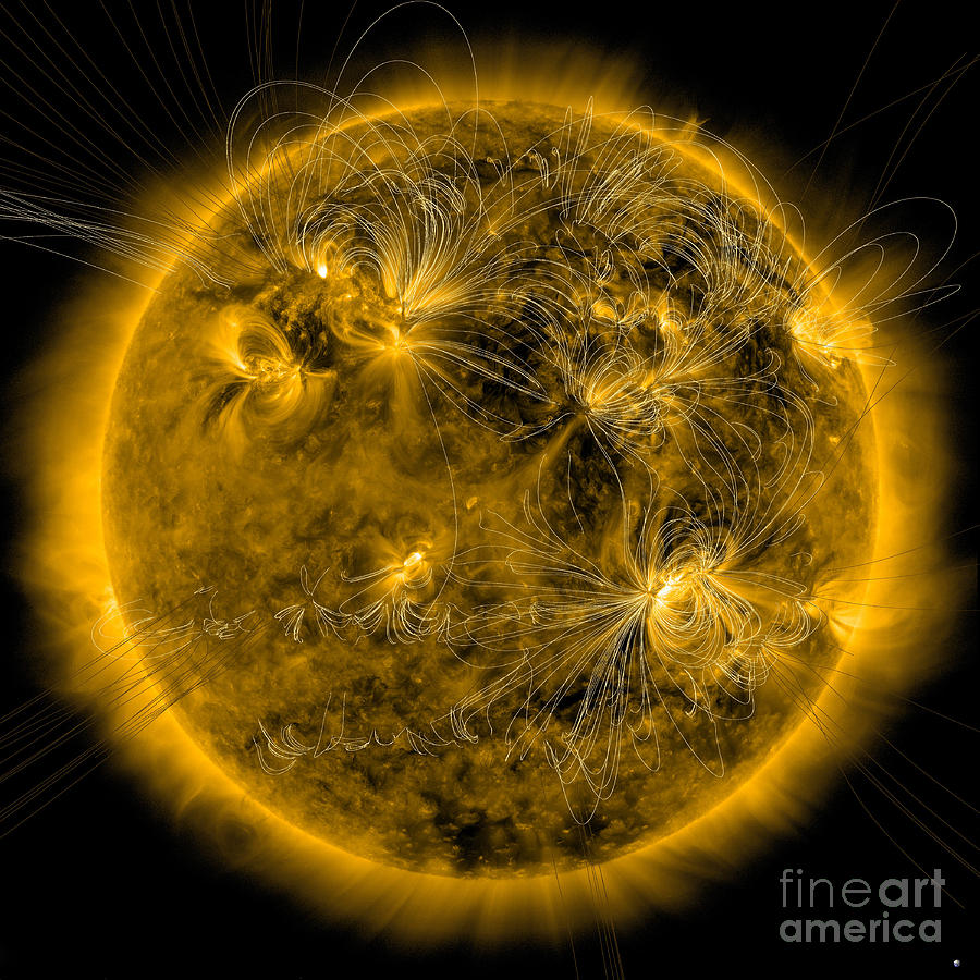 Magnetic Field Lines On The Sun Photograph