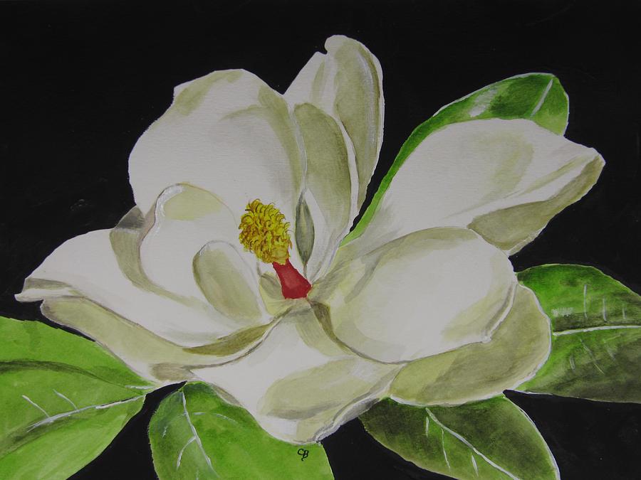 magnolia painting - photo #20