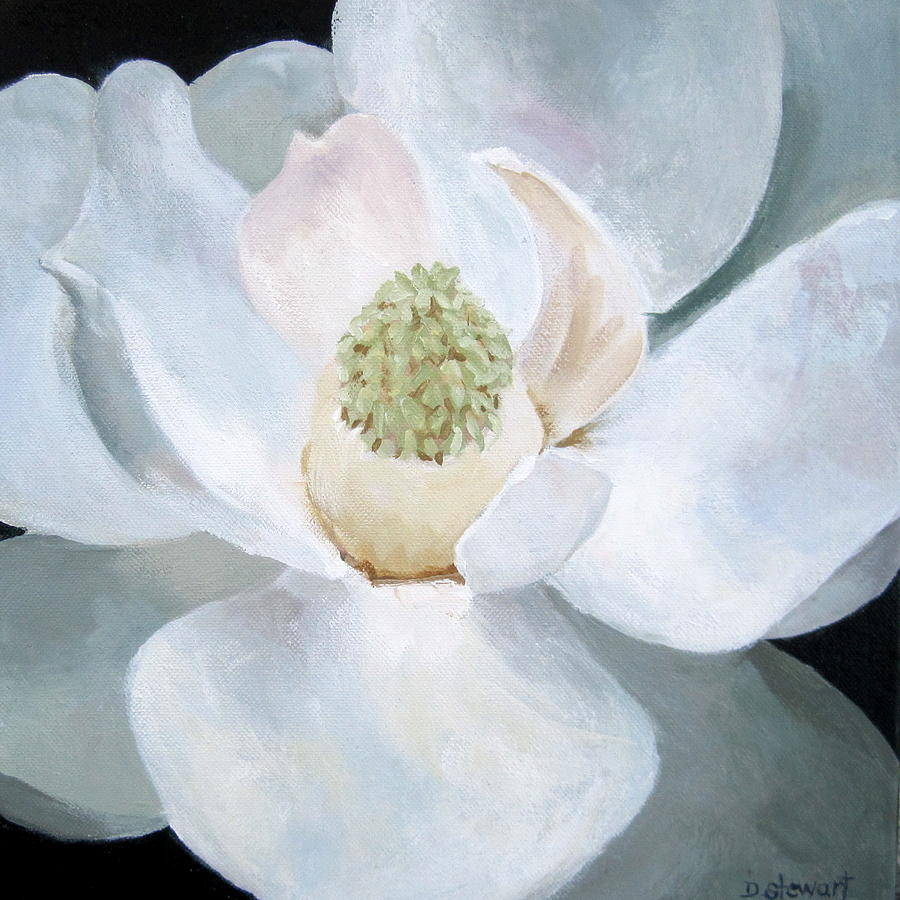 Magnolia Painting by Diana Stewart