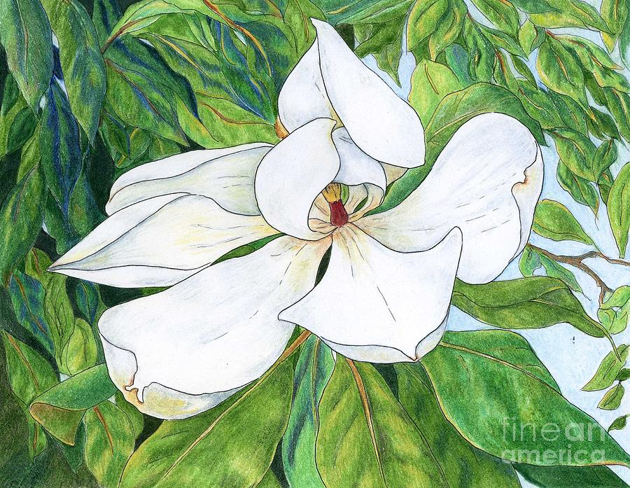 Magnolia Mixed Media  - Magnolia Fine Art Print