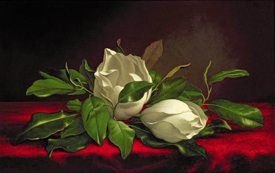 magnolia painting - photo #42