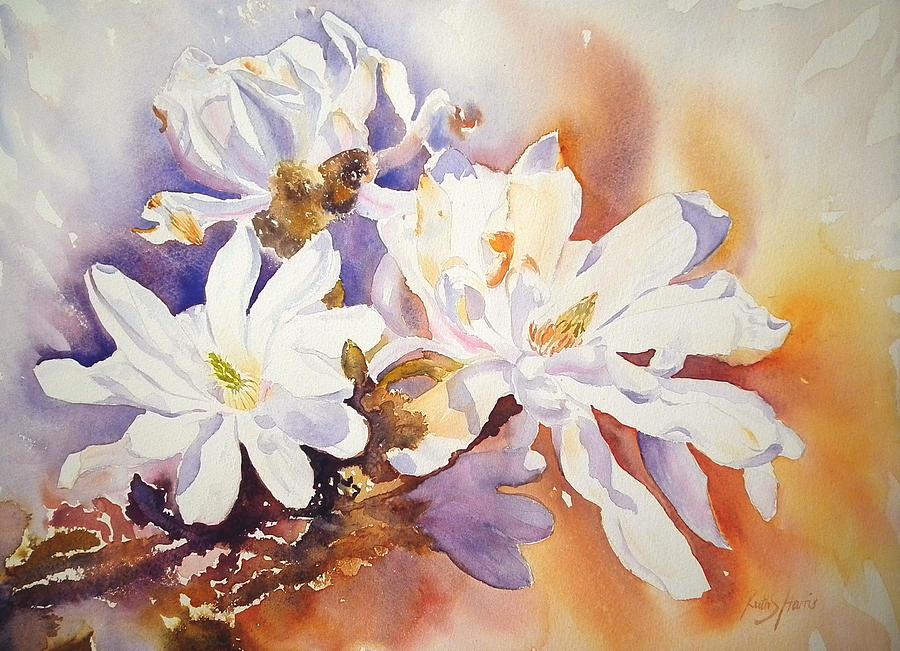 Magnolia Stellata Painting