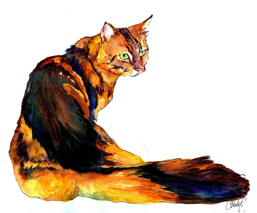 Maine Coon Cat Portrait Painting  - Maine Coon Cat Portrait Fine Art Print
