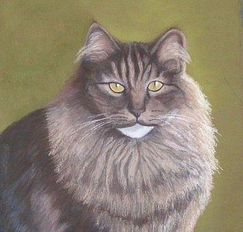 Maine Coon Serenity Pastel 