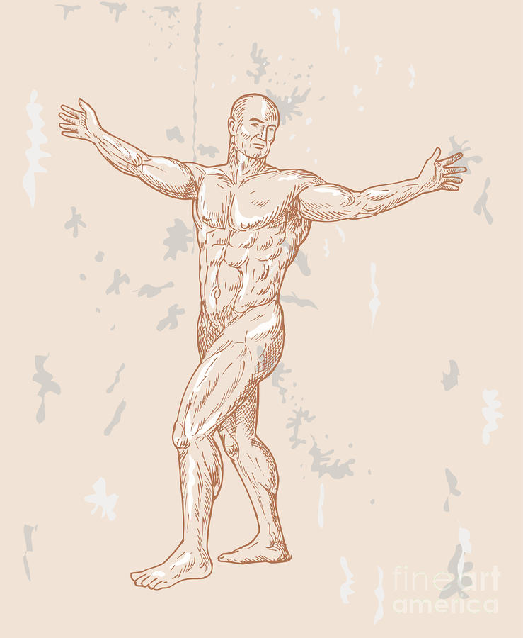 Male Human Anatomy Digital Art  - Male Human Anatomy Fine Art Print