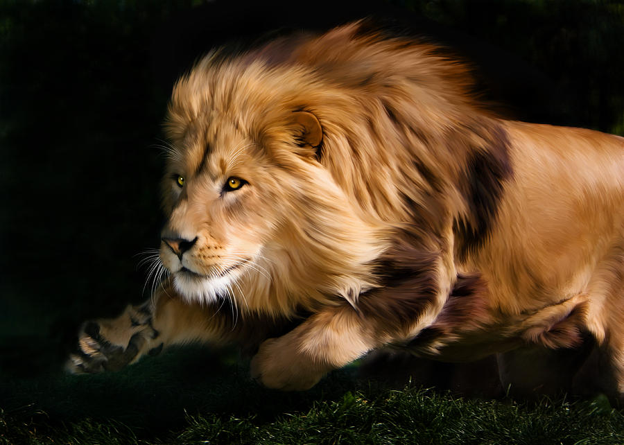 Male Lion Hunting Digi...