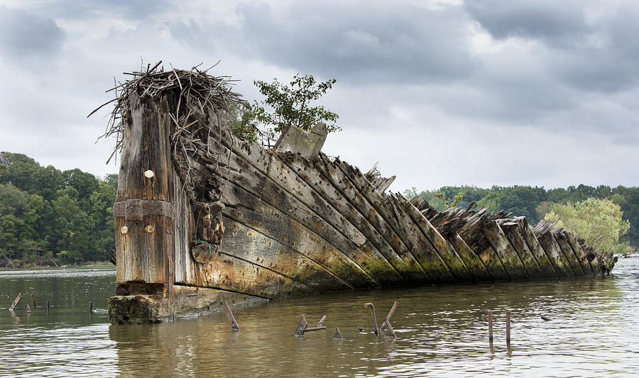 Mallows Bay Ship Graveyard - Maryland Photograph  - Mallows Bay Ship Graveyard - Maryland Fine Art Print