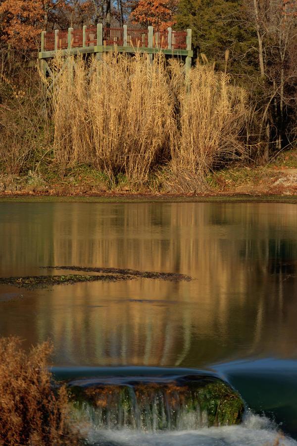 Mammoth Spring Arkansas Photograph