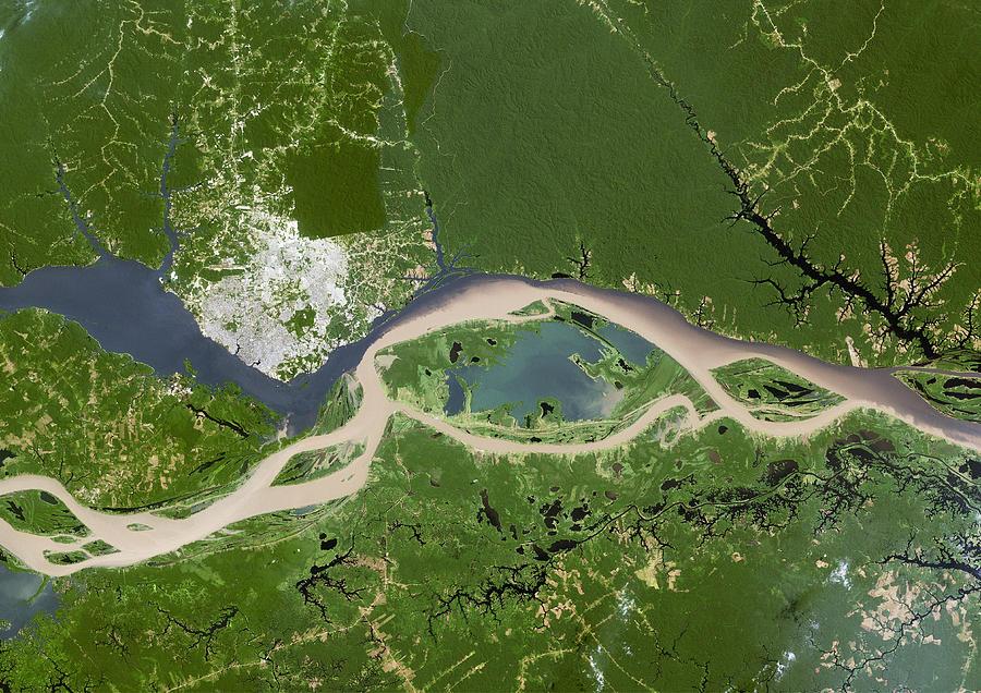 Negro Photograph - Manaus, Satellite Image by Planetobserver