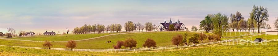 Manchester Horse Farm Photograph