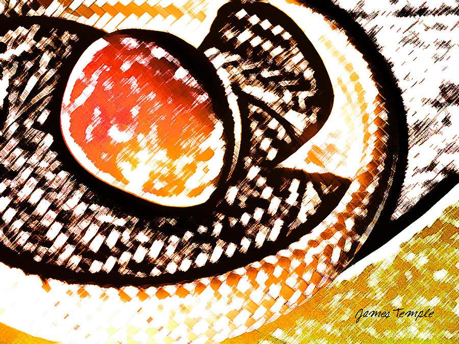 Mango Digital Art - Mango by James Temple